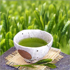 sencha-gyokuro_green-tea