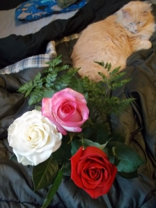 Roses and Poof! Image via Ms. Doll